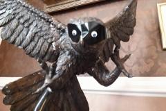 Owl sporting a Zorro mask
